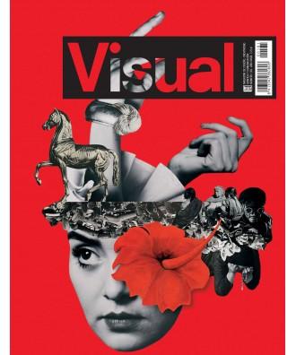 Visual Nº 181