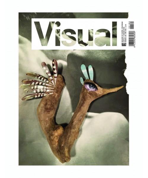 Visual Nº 184