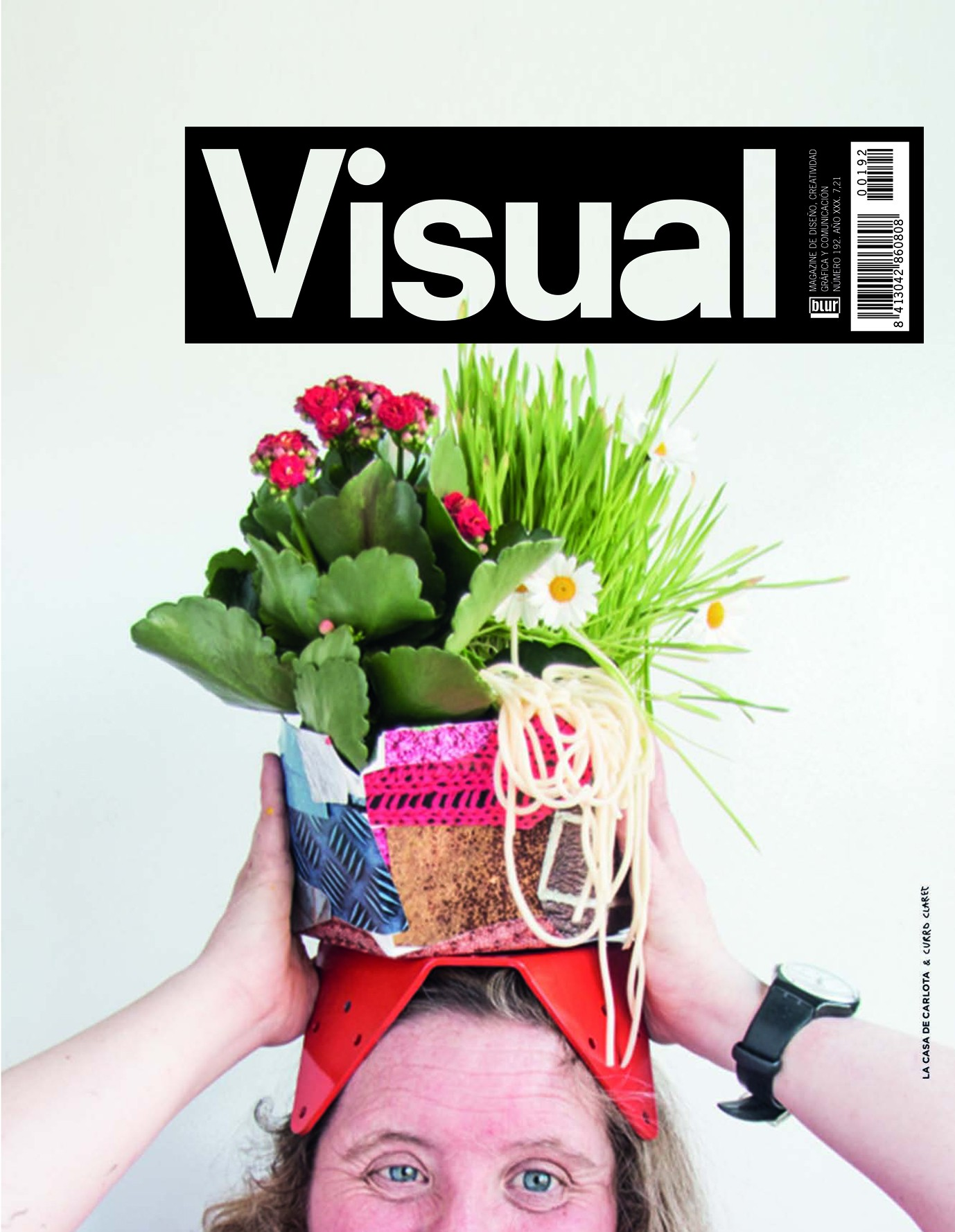 Resultat d'imatges de visual magazine 192
